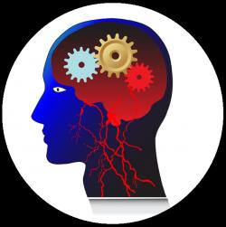 Мозговое кровообращение и память
